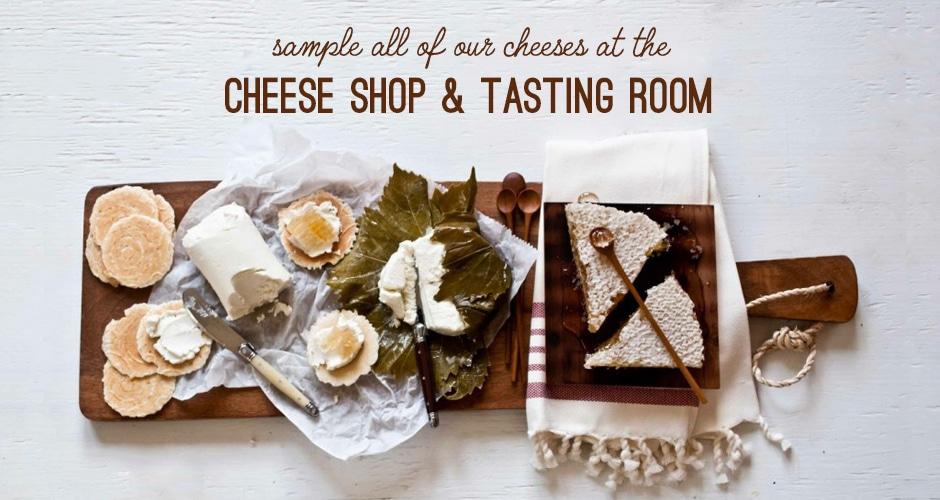 slides-cheeseshop-samples2